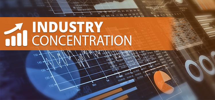 Industry Concentrations
